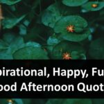 Inspirational, Happy, Funny Good Afternoon Quotes